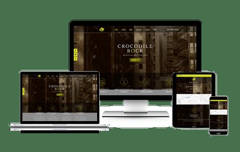 Croc Marketing case study